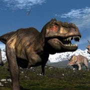 Meteorite Impact and Dinosaur Extinction